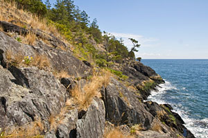 Bluffs overlooking the ocean at Cape Roger Curtis